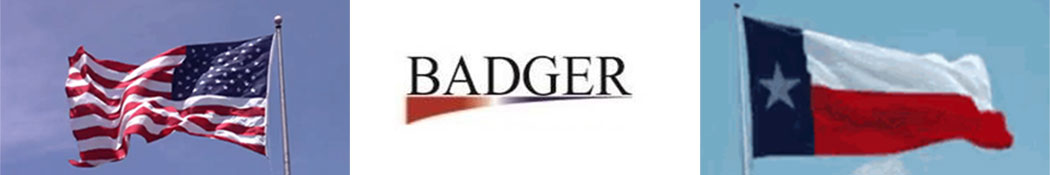 Badger BMB Services, Inc. Logo